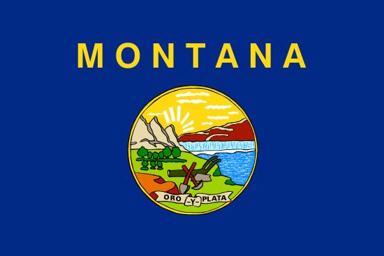 Montana betting betting raja hindi dubbed dailymotion